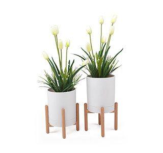 Flower Pot | Furniture Decorations NZ