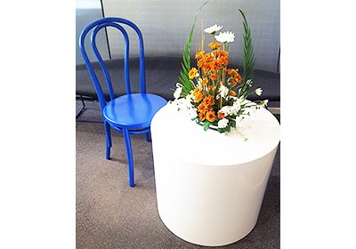 Custom Commercial Furniture Auckland | Bentwood Painted Chair